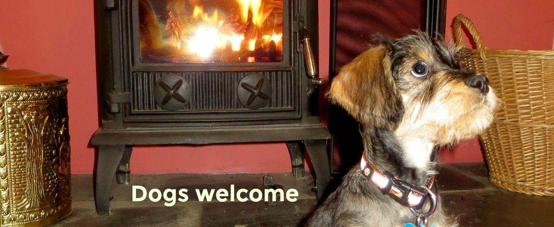 Lakes get aways Dogs welcome